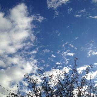 Tucson blue skies